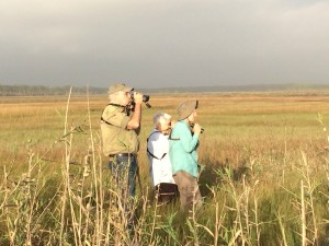 St. Vincent NWR, CBC, with Debbie Segal, Donna Gaudet and Grayal Farr